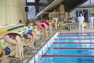Gradsko takmičenje u plivanju