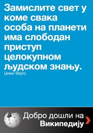 Viki-škola brošura