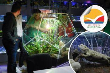 Javni akvarijum i tropikarijum – odredište za nezaboravan čas biologije
