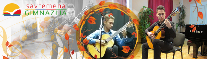 Gitarista Nikola Milosavljević